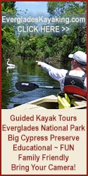 kayak tours florida everglades